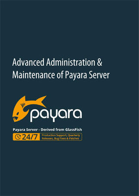 Advanced Administration & Maintenance of Payara Server - Guide