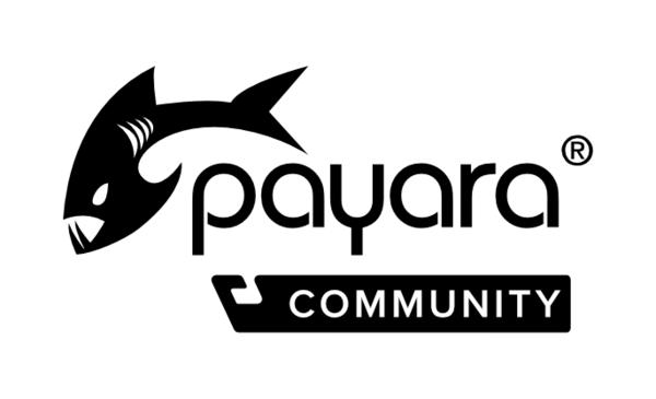 More Payara Platform Resources! image #1