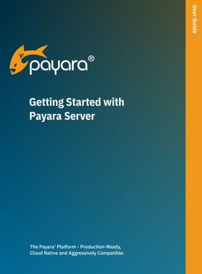 Getting Started with Payara Server image #1