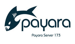 Payara Server 173 is out image #1
