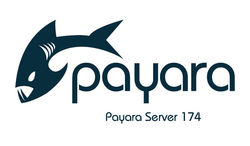 Payara Server 174 is out! image #1