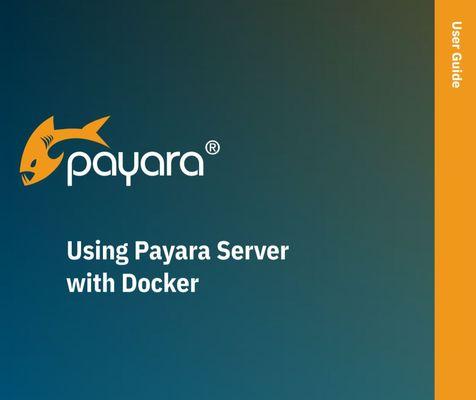 The Payara Platform & Docker image #1